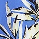 Blue Florals(A08862)