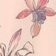 Pink(A09153)